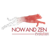 NOW AND ZEN Evolution